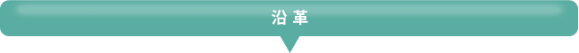 index_companyHistory